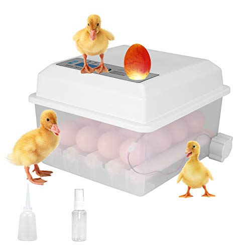 KOSIEJINN Incubadora De Huevos 16 Huevos Incubadora Automática De Huevos Incubadora Digital De Huevos Con Control De Temperatura y Volteador Para Huevos De Pollo, Huevos De Pato, Huevos De Paloma