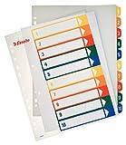 ESSELTE 100213 - Indice de proyectos imprimibles PP DIN A4 1-10