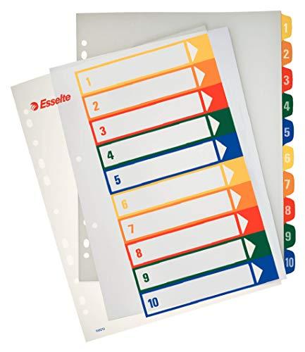 ESSELTE 100213 - Indice de proyectos imprimibles PP DIN A4 1-10 ✅
