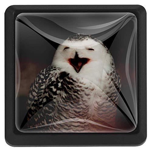 Vierkante ladeknoppen, 3 pakketten 37mm Trekhendels met kat dragen kroon, gebruikt voor slaapkamer dressoir deur kast keuken Modern design 37x25x17mm/1.45x0.98x0.66in Happy Owl
