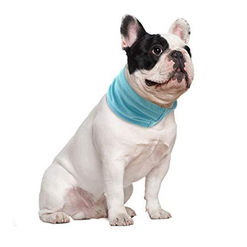HAOCHIDE Huisdier Accessoires zomer hond huisdier koelhalsband Pitbull Cool Bandana Sunstroke Preventie puppenschaal Small Medium Large Dogs Cool Collars, Blue, L