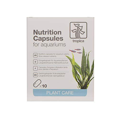 Nutrition Capsules, 10 Kapseln