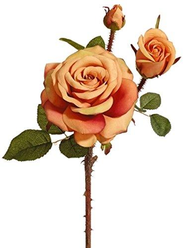 Fiebiger Floristik 12er Pack Wildpolyanthaedelrose 50cm, orange-Gel,Kunstblume/Kunstpflanze