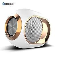 ポータブルBluetoothスピーカー、Bluetooth 5.0 TWS 3DサウンドサポートUディスクおよびTFカード/ FMラジオ/家庭用/屋外用、ホワイト