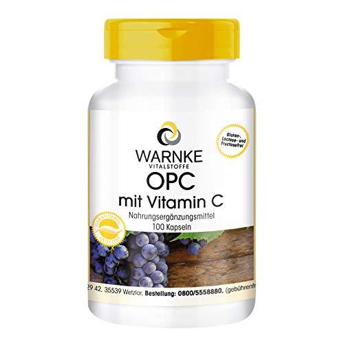 OPC Kapseln - aus Traubenschalen-Extrakt - OPC mit Vitamin C - vegan - 100 Kapseln