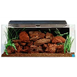 SeaClear 40 Gallon Acrylic Aquarium