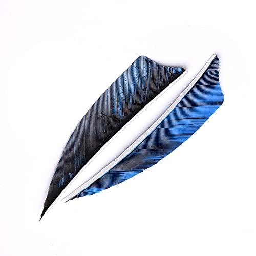 ACCMOS 3 Pulgadas Pluma de Pavo, para Tiro al Arco Flechas de Bricolaje Veleta Carbono Madera Eje Flecha Fletches Pluma ala Derecha 50 pcs (Azul)