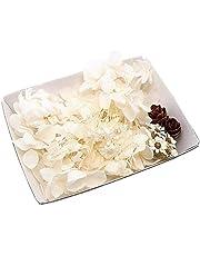 ハーバリウム花材セット 材料 アロマワックスサシェ プリザーブドフラワー ドライフラワー アジサイ