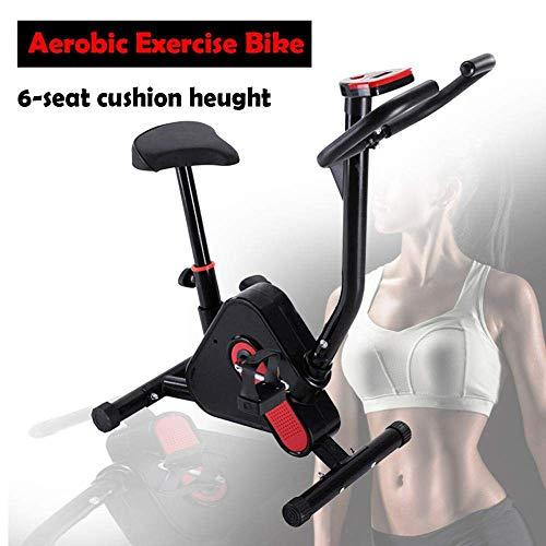 BH Indoor-Heimtrainer Fitness-Fahrradtrainer, Cardio-Workout-Ausdauer-Heimtrainer für das Heim-Fitnessstudio mit Digitalanzeige, Einstellbarer Widerstand