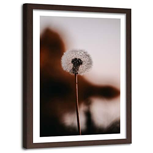 Image Imprimé Moderne Pissenlit cadre marron Fleur Nature Plante marron 40x60 cm