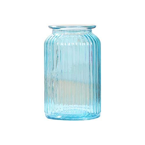Skyeye 1PCS Moderne col Large Vase en Verre Rayures Verticales Jacinthe d'Vase en Verre hydroponique Vase pour Home Garden Décoration Bleu 11 *18.5 CM