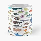 Générique Beach Science Life Marine Ocean Biology Sea Fish Best 11 Ounce Ceramic Coffee Mug
