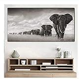 xwwnzdq Elefantes Animales Que pintan Cuadros de la Pared Pintura de la Lona Impresión para la Sala de Estar Tamaño Grande Cuadros Decorativos Modernos Cuadros del Animal 50x100cm Sin Marco
