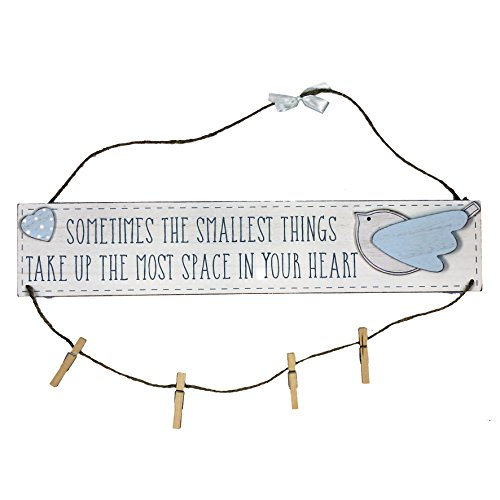 Petit Cheri Little Things Blue Hanging Plaque With Pegs Lovely New Baby Gift
