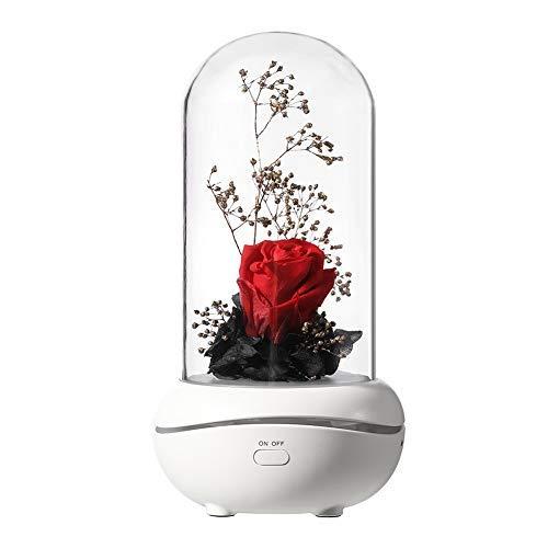 Kit de rosa de la Bella y la Bestia, rosa artificial, flor de seda roja, fragancia conservada, lámpara portátil recargable USB difusor de aroma (rosa)
