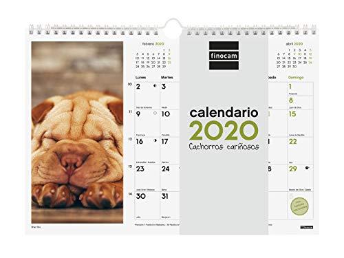 Finocam - Calendario de pared 2020 Imágenes Espiral 30x21 Cachorros español