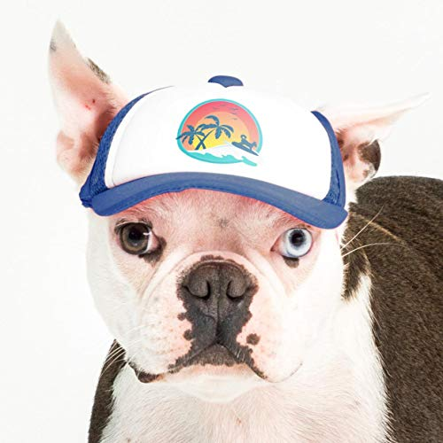PupLid Trucker Hats for Dogs (Small) (Blue, Surfer Dog) Stylish Sun Protection Dog Hat for Small Active Dogs - Adjustable Chinstrap & Ear Holes for Secure Comfortable Fit