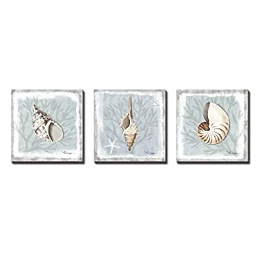 3Hdeko 3 Panels Seashell Decor Mordern Abstract Painting Conch Coastal Artwork Pictures Framed Paintings on Canvas Wall Art for Living Room Bedroom Home Decor 12x12 Inch x3pcs