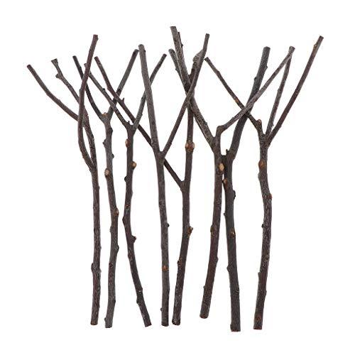 MagiDeal 8 Piezas de Rama de árbol de Planta Seca Natural Sin Pintar DIY Arte Artesanía Boda Hogar Adorno