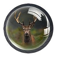 引き出しハンドルプル 引き出し装飾キャビネットノブドレッサー引き出しハンドル4個,カメラを見ている鹿のクワガタ