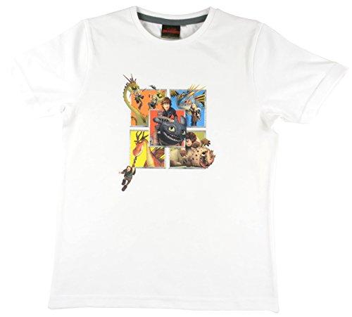 Dreamworks Dragon - T-Shirt Drachen in weiß, Größe 116-122