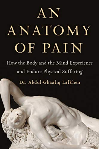 An Anatomy of Pain: How the Body and the Mind Experience and Endure Physical Suffering (English Edition)