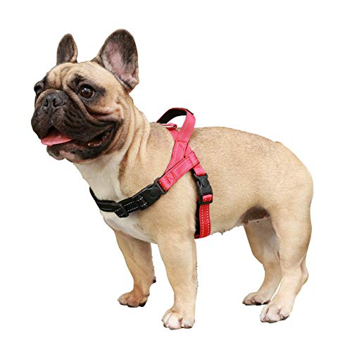 iChoue Dog Harness Easy On and Off Adjustable Harness Lightweight Harness with Handle for Small and Medium Dogs - Red L