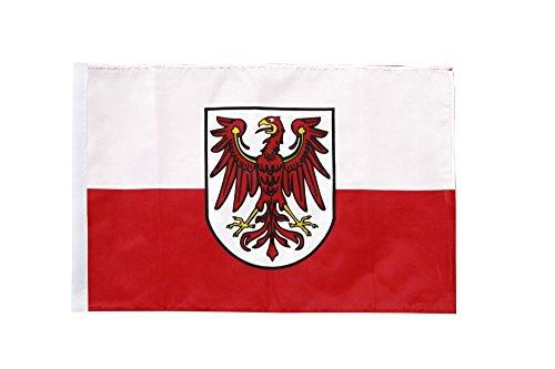 Flaggenfritze® Flagge Italien Südtirol - 30 x 45 cm