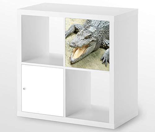Möbelaufkleber für Ikea KALLAX / 1x Türelement Alligator Krokodil Tier Kat6 böse Zähne Aufkleber Möbelfolie sticker (Ohne Möbel) Folie 25D455