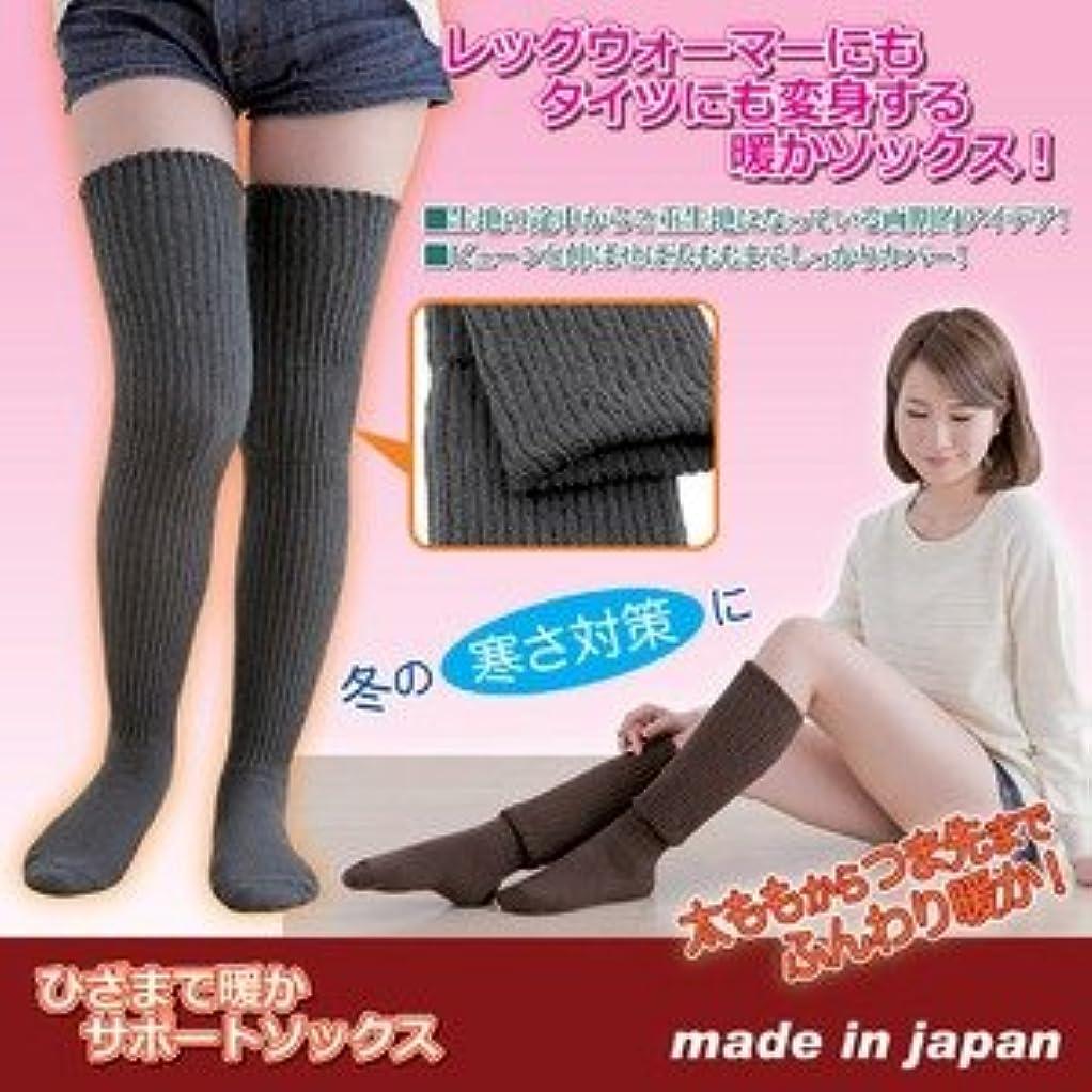 スラム安定しました細分化するひざまで暖かサポートソックス 【レディース22.0~25.0cm/グレー(灰)】 日本製 ds-1541111