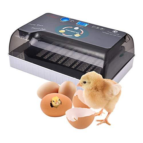 Povanjer Eier Inkubator Automatisch Mit Effizienter LED Beleuchtung Feuchtigkeitsfest Energiesparend Kühltechnologie Bis 35 Eier Brutmaschine Vollautomatisch Hühner Eier Brutgerät,