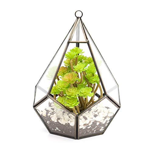 The Fellie Glas Blumentöpfe zum Aufhängen,als Blumentopf für Miniatur-Bonsai,Diamantform Geometrisches Terrarium aus Glas, auch für Sukkulenten(Kupfer)