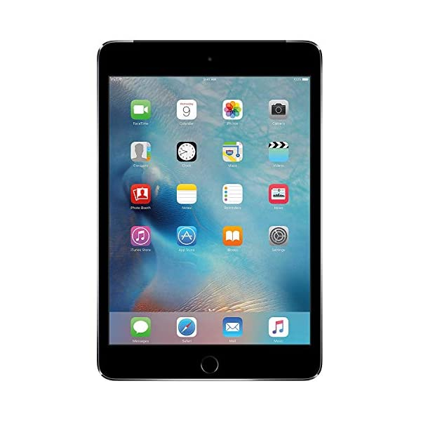 Apple iPad Mini 4 (64GB, Wi-Fi + Cellular, Space Gray) Renewed