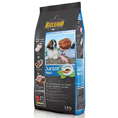 Belcando Junior Maxi [1 kg] Hundefutter | Trockenfutter für Junghunde großer Rassen | Alleinfuttermittel für Junghunde ab 4 Monaten