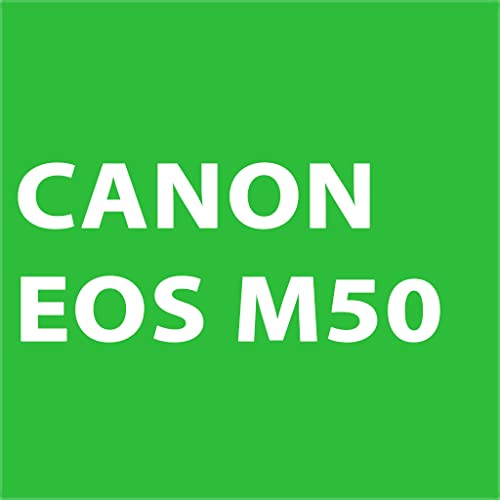 What battery does the Canon m50 take?