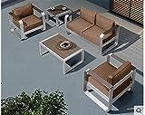 SHUJINGNCE Canapé en Plein air Combinaison de Loisirs Alliage d'aluminium American Tea Table de Table Chaise Balcon Patio Tieyi Chaise de Jardin (Color : 1)