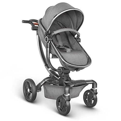 Besrey Silla de Paseo Lujo Cochecito de Bebé con Cuna Reversible para 0-3 años Gris