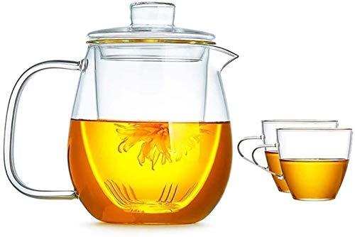 Tetera Tetera Taza Tetera Tapa Vidrio Lanza Tapa de Hielo Tetera fácil de Limpiar fácil de Verter Ideal para Jugo de Vino Leche Leche fría Agua Caliente café, etc. Taza de té (Size : B)