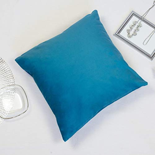 Offtopic |Set da 4 federe Cuscini Divano 45x45 cm in Velluto Morbido | Cuscini Decorativi Eleganti in Tinta Unita | Lavabile in Lavatrice | Blu Chiaro