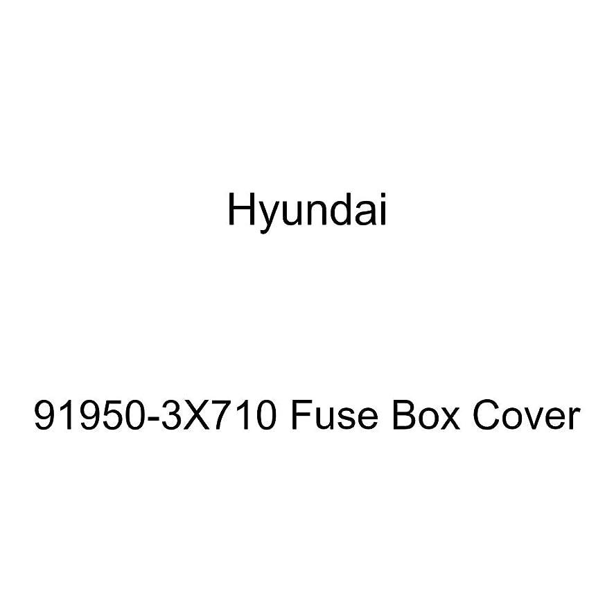 Genuine Hyundai 91950-3X710 Fuse Box Cover