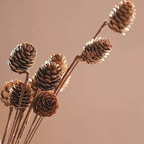 WXHXSRJ 20 Piezas de Flores secas, Ramo de Cono de Pino Natural, Flores secas, para Boda, arreglos Florales de Bricolaje, Guirnalda de Navidad, decoración del hogar