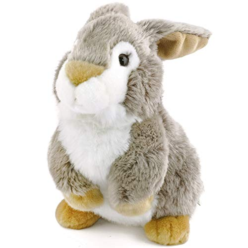 Robin The Big Cheek Rabbit - 10 Inch Stuffed Animal Plush - by Tiger Tale Toys
