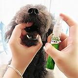 BeesClover Spray dental para mascotas, elimina el olor, previene la placa, cálculo, limpieza de dientes, para perro, gato, para mascotas