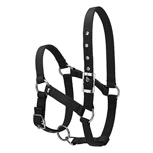 2020 Professional 6MM Verdikte Paardhoofd Collar Verstelbare Veiligheid Halter Teugel Halster Paard Paardrijden Handschoenen