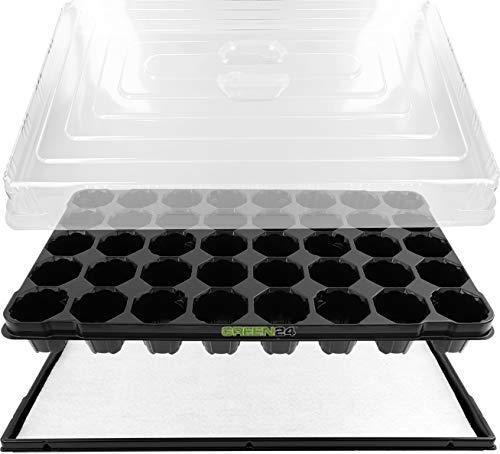 GREEN24 Anzuchthaus PROFI-40 Zimmer-Gewächshaus Hydroponik XL, automatische Bewässerung für die Anzucht - Profi Treibhaus mit Wanne + Kapillarsystem + QP Topfplatte + Haube