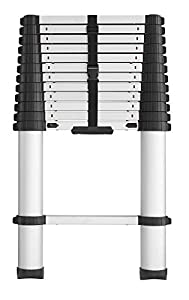 Cosco 20313T1ASE Smartclose Telescoping Ladder