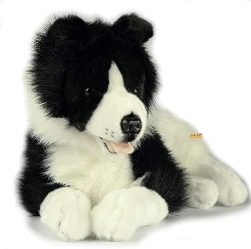 Border Collie ca.42 cm Plüschtier Kuscheltier Stofftier Plüschhund von Zaloop® (liegend A10)