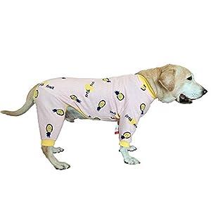 BT Bear Vêtements chauds pour chien, automne/hiver pour animaux domestiques, vêtements de protection contre les poils, pyjama à quatre pattes pour chien, labrador, golden retriever, samoyède