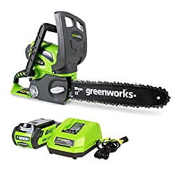Greenworks Cordless Chainsaw 12-Inch 40V 2.0AH Battery