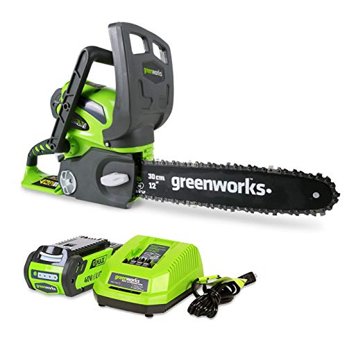 Greenworks 12-Inch 40V Cordless Chainsaw, 2.0 AH Battery and...